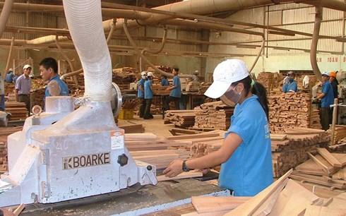 Xuất khẩu gỗ sáng nếu đảm bảo nguồn cung sạch